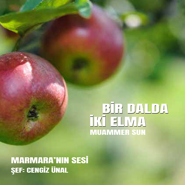 İki Elma